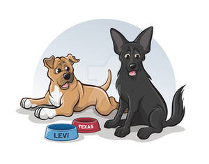 Levi and Texas