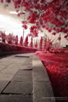 walking in a red path