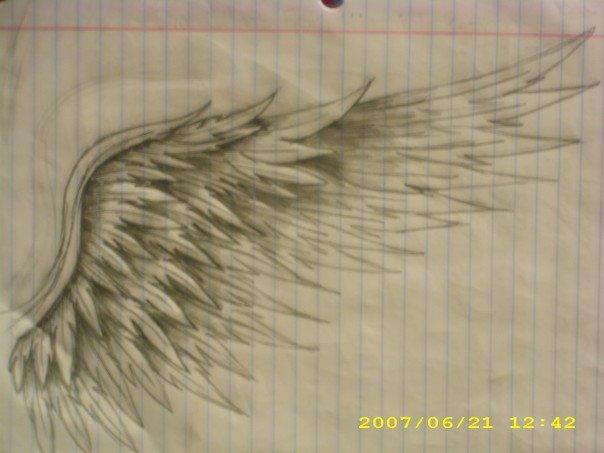 Wings by KelseySparrow67