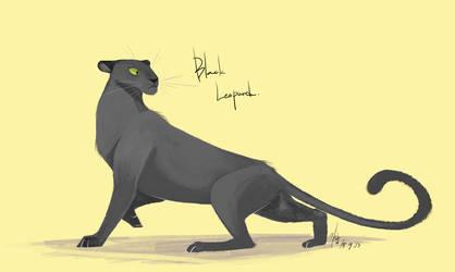 black leopard by Ganym0
