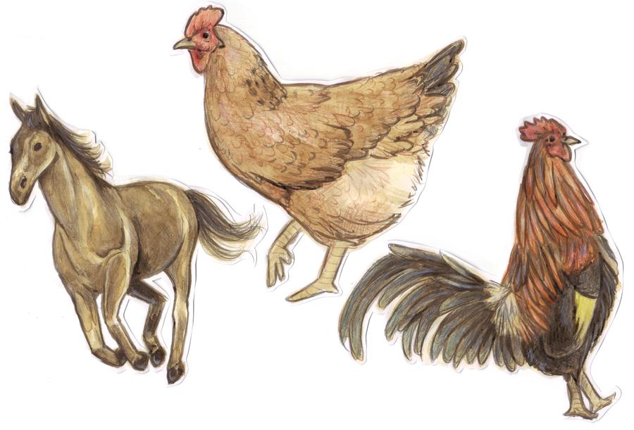 Animals by cuine on deviantart for Cuine