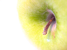 Apple super macro exposition by PaulaImperatrix