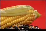 Corn Diva by PaulaImperatrix