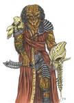 Clan Elder