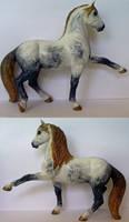 PAPO Andalusian Stallion
