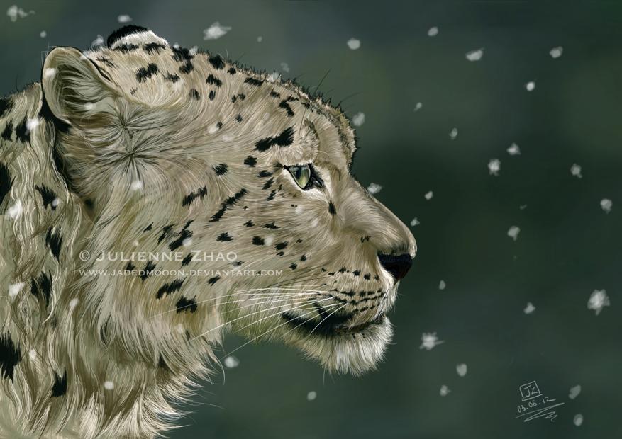 Winter Solace by Jadedmooon