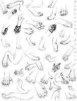 Paw Study by PolarWolfStudio