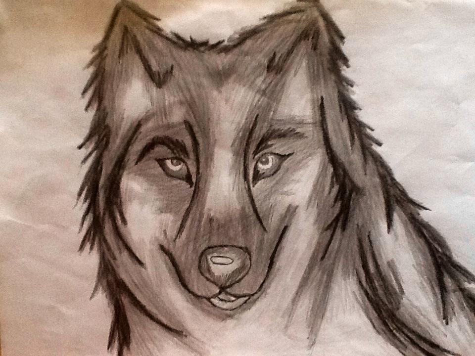 Cambada de desenhos da PoLo Wolf_by_ossami-d5xgrzo