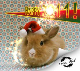 Happy New Year: 2011