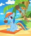 Dashie at the beach