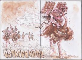 Ostrich Race by nerresta