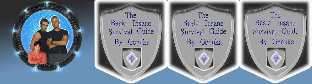 My Shield survival guide Banner