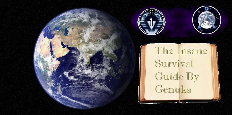 Night Sky survival guide Banner