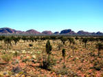 Kata Tjuta Transition