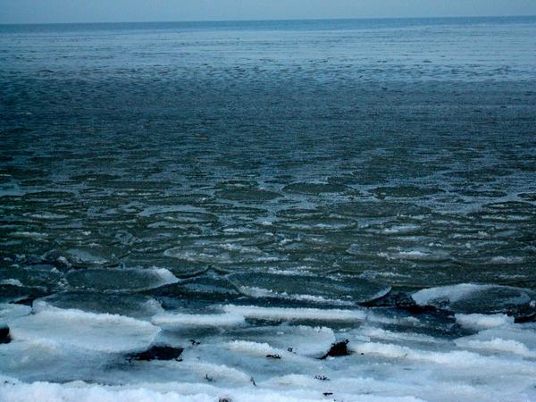 Frozen Sea at Jurmala
