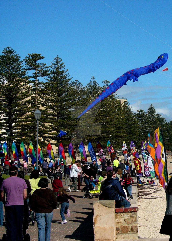 Glenelg Kite Record 2