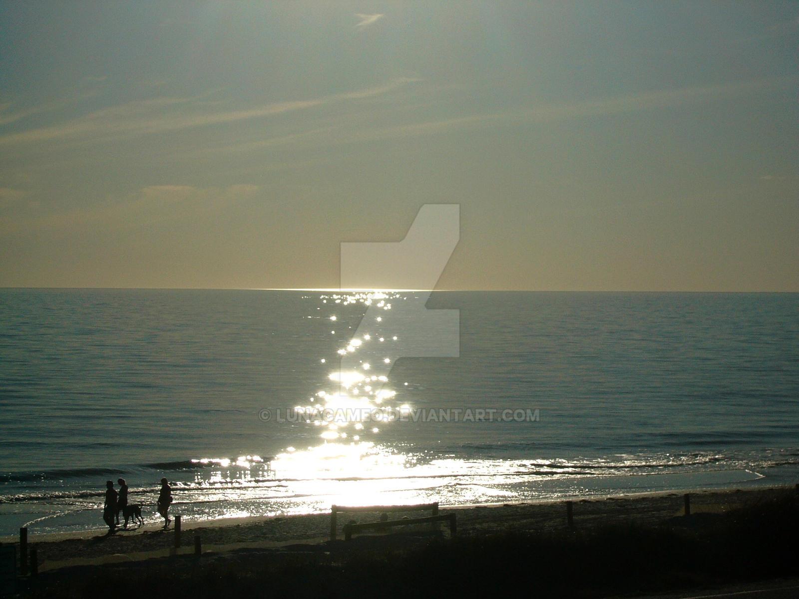 No Sun Reflection