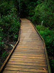 Hinterland Boardwalk