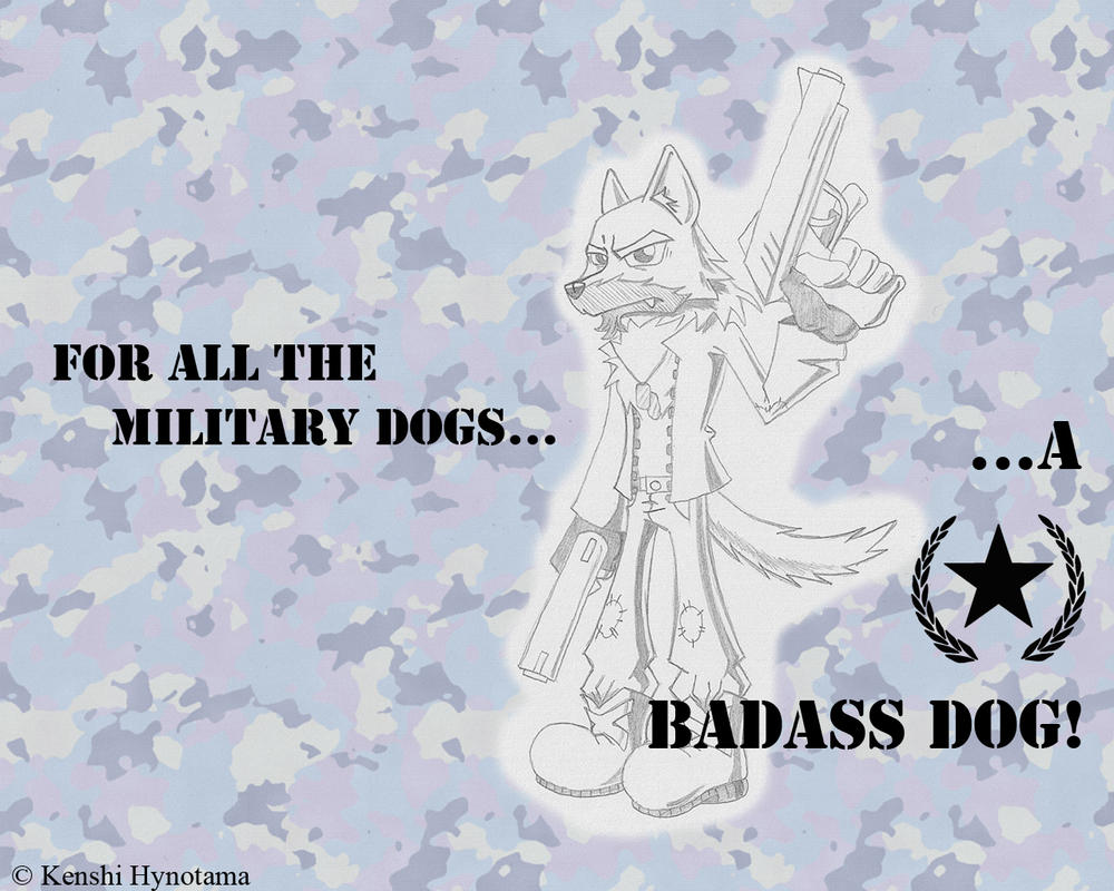 For the military dogs BLUE Background by Hynotama