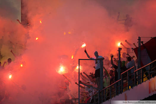 football fans 4