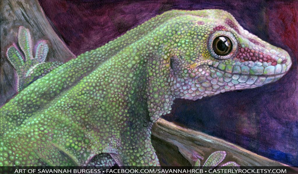 Madagascar Day Gecko by savannahrcb