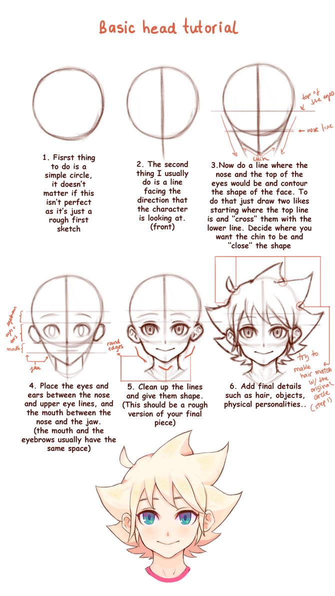 Basic Head/Face  tutorial by Kifumi-chan1