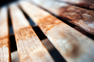 Wooden Bench Macro by richardxthripp