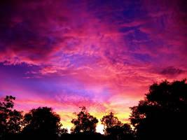 Fiery Pink Sunset 2 by richardxthripp