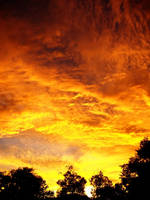 Fiery Orange Sunset 3 by richardxthripp