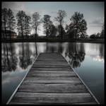 Dimness memoirs