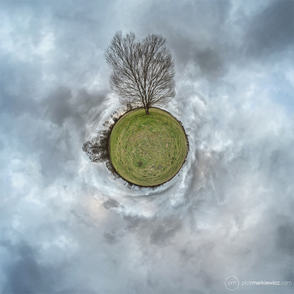Luckytree by Soczi