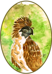 3. Pithecophaga Jefferyi