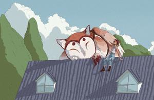 my neighbors keep sitting on my roof