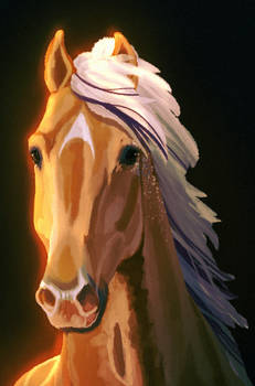 Color Me Impressed | Prize Portrait