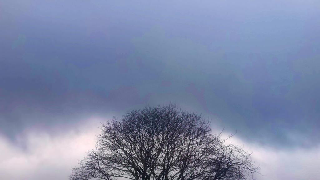 silent sky. by GaaraTheAlicorn