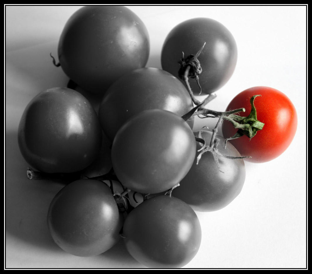 Tomatoes 3 by uk-antalya