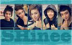 Shinee SHinee