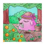 Ditto Gardening