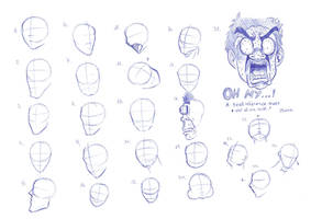 Head References 060814 by RemiLatour