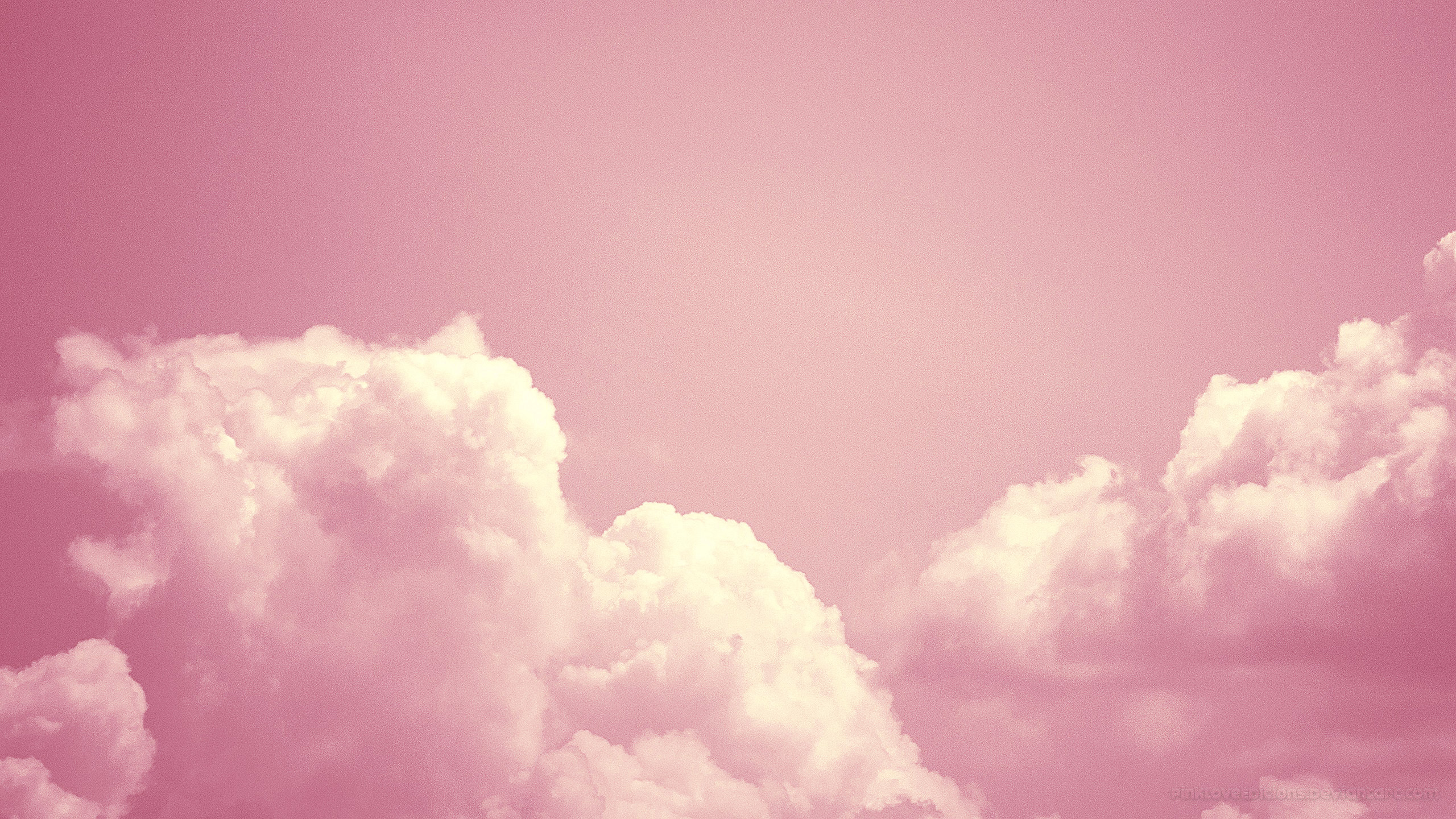Pink Wallpaper Tumblr wallpaper - 1370487