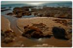 beach- Tilt shift -04