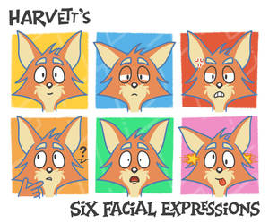 Harvett Fox: Six Facial Expressions