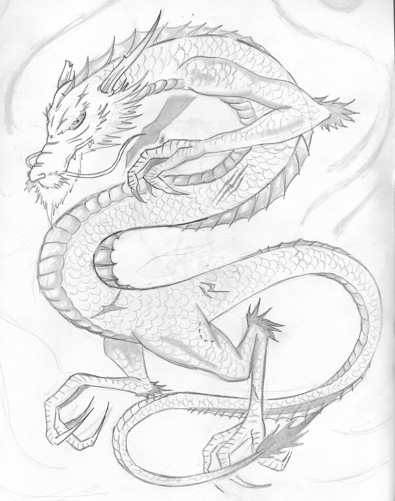 Japanese Dragon 01  Sketch By Shadow017