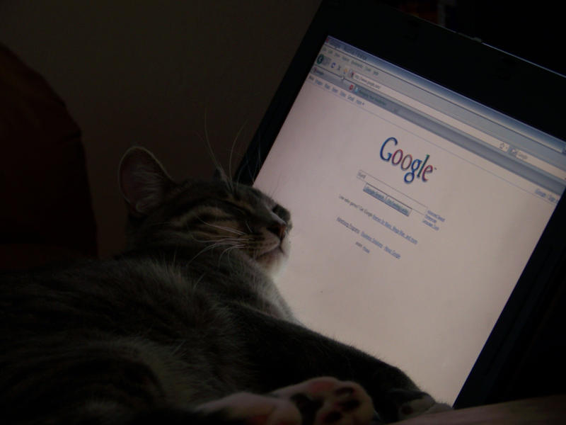 Miiki Uses Google by anjollie131415