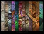 Change of Seasons by ClaireJones