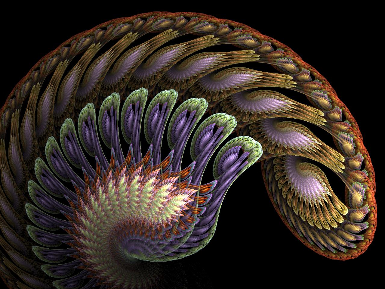 Baroque Spiral by ClaireJones