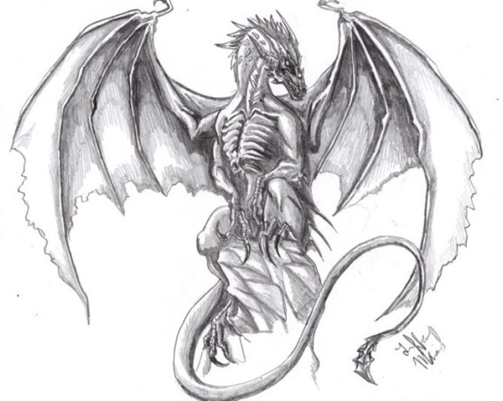 Proud Black Dragon Sketch By Tiffawolf On DeviantArt