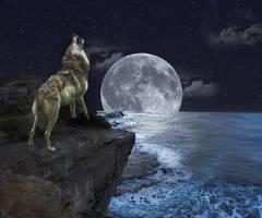 White Wolf Howls