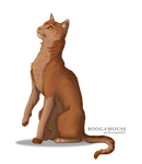 Realistic Amberpaw (attempt 2)