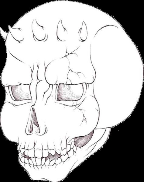 Dessinez des supers monstres!!! - Page 2 Skull_by_Ours_Bleu